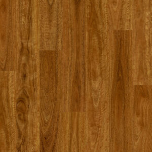 Eligna Spotted Gum