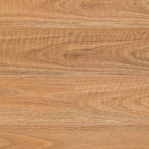Australian Long Board Spotted Gum