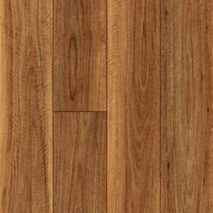 Largo Spotted Gum