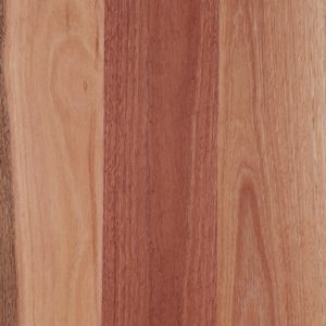 ASBARSMSBG barrington super matte sydney bluegum