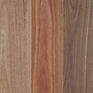 Barrington Matt Spotted Gum
