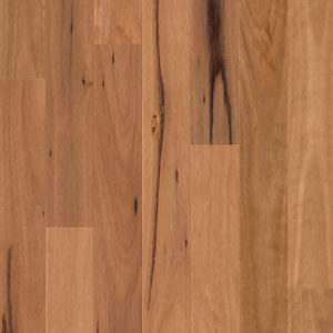 Compact Blackbutt 1 Strip