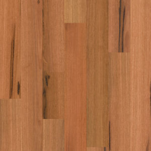 COM3859 compact spotted gum 1strip